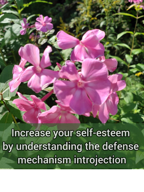 Increase your self-esteem by understanding the primitive defense mechanism introjection