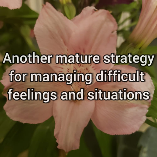 Another effective strategy for handling difficult fellings and situations
