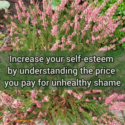 Increase your self-esteem by understanding the price you pay for unhealthy shame